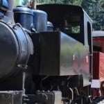 Silverstream Railway Museum